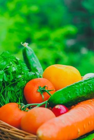 Fresh organic vegetables in basket. harvest concept Standard-Bild