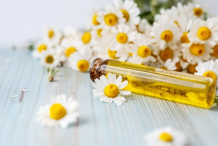 Essential aroma oil with camomile on turquoise painted wooden background. Selective focus. 스톡 콘텐츠