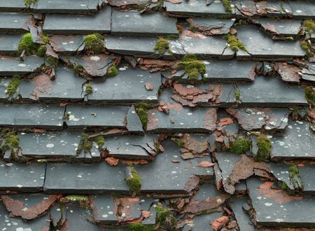 Crumbling tiles with moss on derelict roof photo