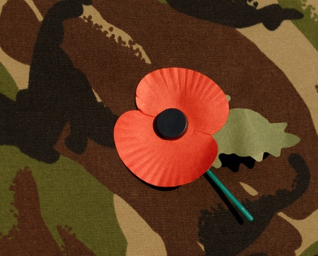 Remembrance Day poppy on camouflage combat jacket