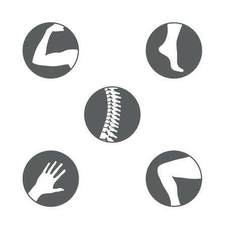 Conjunto de ícones de ortopedia.