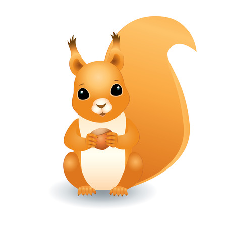 baby isolated: Vector three dimensional illustration of a cute red squirrel sitting and holding a hazelnut Illustration