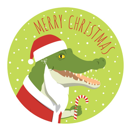 Vector Christmas illustration of a crocodile in a Santa Claus costume smiling and holding candy cane. Round format. Lime green background.