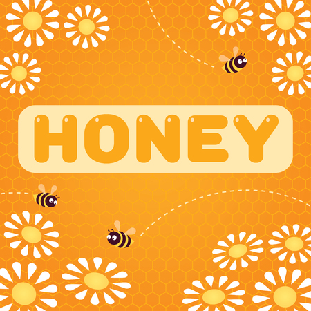 Vector illustration. Word 'Honey'. Bees flying over white daisies.