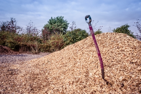 Purple shovel in a big pile of mulch
