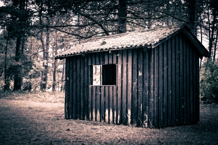 Spooky cabin in a dark and mysterious forest Stock Photo