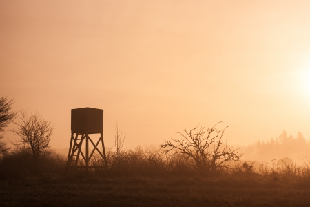 hunters tower: Hunters lookout tower in beautiful morning mist scenery
