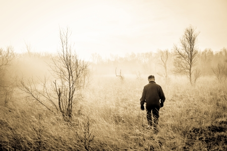 walk in: Old man taking a morning walk in misty nature