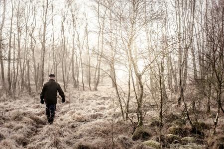 Vieil homme tenant une promenade matinale dans la nature brumeuse Banque d'images