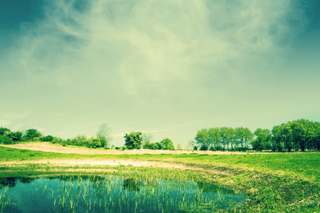 Countryside landscape with a pond photo