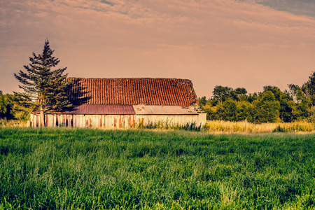 Old abandoned barn in the countryside photo