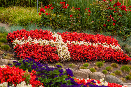 Flower garden with red and white flowers illustrating the danish flag Stock Photo