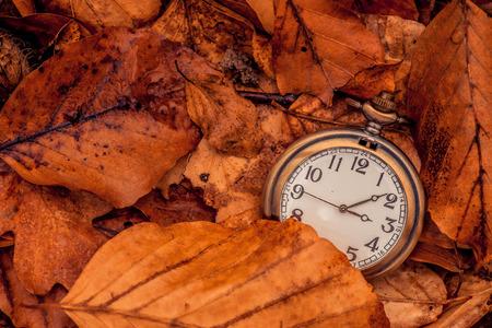 秋が来ていることを示す時計 写真素材