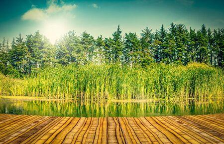 Paysage fluvial color�e avec un quai de bambou