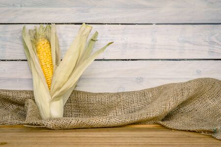 maize: Raw maize cob on a wooden table