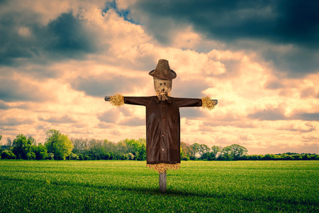 Scarecrow with a leather jacket on a green field Stock Photo