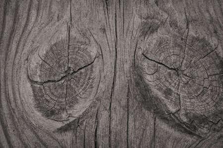 Close-up d'un fond de bois rugueux avec des textures Banque d'images