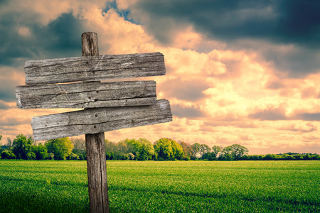 Worn wooden sign on a fresh green meadow Stock Photo