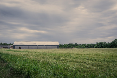 Farm with a barn on a field in cloudy weather