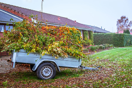 Garden waste in a wagon in the autumn