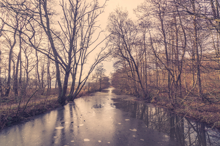 frozen river: Frozen river in a forest at wintertime