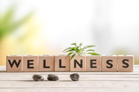 salud: signo de bienestar con cubos y flores de madera y piedras
