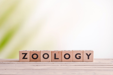 zoology: Zoology lesson sign on a table in the wild Stock Photo