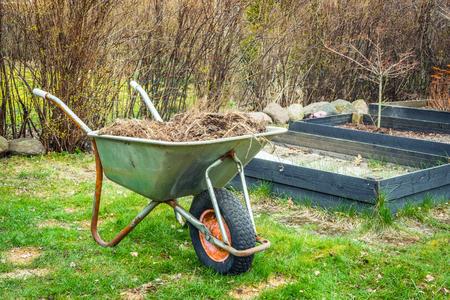 Carretilla con residuos de jardinería en un césped Foto de archivo - 55221474