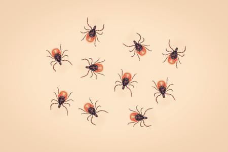 lurk: Ticks on a yellow background