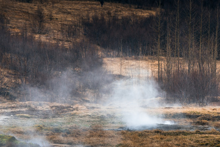 crater highlands: Boiling water and steam on a field in Iceland