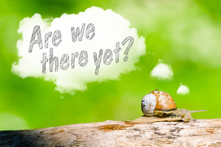 Snail in the forest thinking are we there yet 스톡 콘텐츠