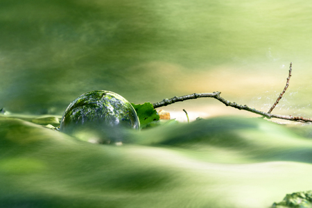 Glass orb in a peaceful forest shining in a river with tree reflextions