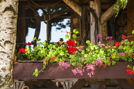 Flowers in a window box in the summer on a wooden shed in the sun 스톡 콘텐츠