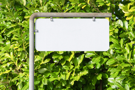 Blank sign on a street with a green bush in the background