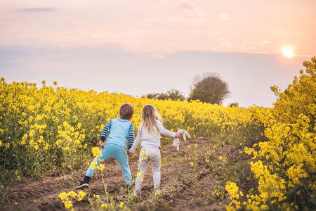 Kids walking towards the sunset on a rapeseed field with their hands together Stok Fotoğraf