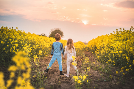 Boy and a girl holding hands on a field with rapeseed crops in the sunset
