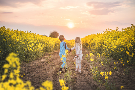 Children holding hands in the sunset on a yellow canola field in a rural scenery