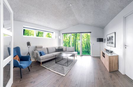Living room in Scandinavian design with trendy interiors and a view to a green forest 免版税图像
