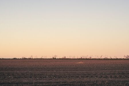 Plowed field in the sunset at dawn with a clear sky over a beautiful countryside 免版税图像