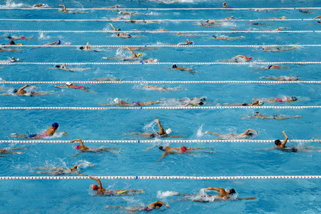 olympic sports: Competition swimming pool crowded of swimmers training