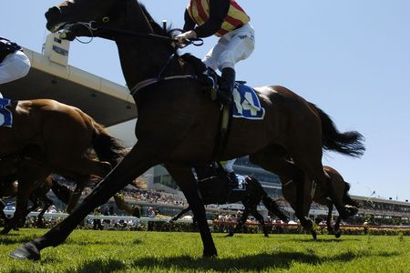 grandstand: Horses racing with the grandstand in the background. Stock Photo