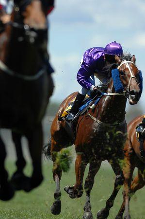 cavallo in corsa: Un fantino in azione nel corso su un cavallo durante una gara.