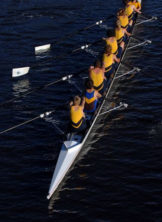 boat crew: an aerial view of a rowing crew in action.