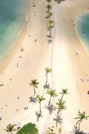 bathers: Guardando verso il basso a Hawaii's Waikiki Beach a Honolulu bagnanti dove godere della sabbia e surf litterd con palme. Archivio Fotografico