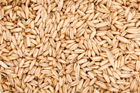 oat and millet seeds as background