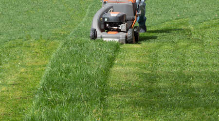 Man moves with lawnmower mows green grass