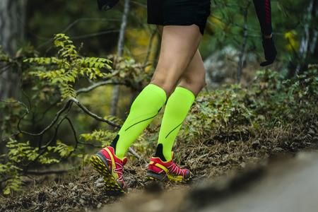 corriendo: esbelta primer y hermosas piernas de mujer que se ejecutan en los calcetines de compresión. aptitud y el ejercicio en el bosque