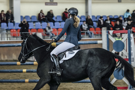sports complex: closeup young female rider on black horse during show jumping competition at sports complex indoors