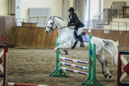 sports complex: Chelyabinsk, Russia - November 22, 2015: young girl athlete on horseback overcomes obstacles in a sports complex during Competitions Horse Show jumping Editorial