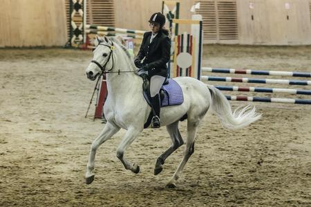 cavallo che salta: Chelyabinsk, Russia - 22 novembre 2015: giovane atleta ragazza su un cavallo attraverso il campo al complesso sportivo durante le gare a cavallo Salto ostacoli Editoriali